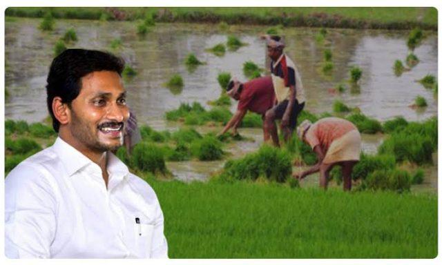 వైయస్సార్ రైతు భరోసాపై సీఎం సమీక్ష