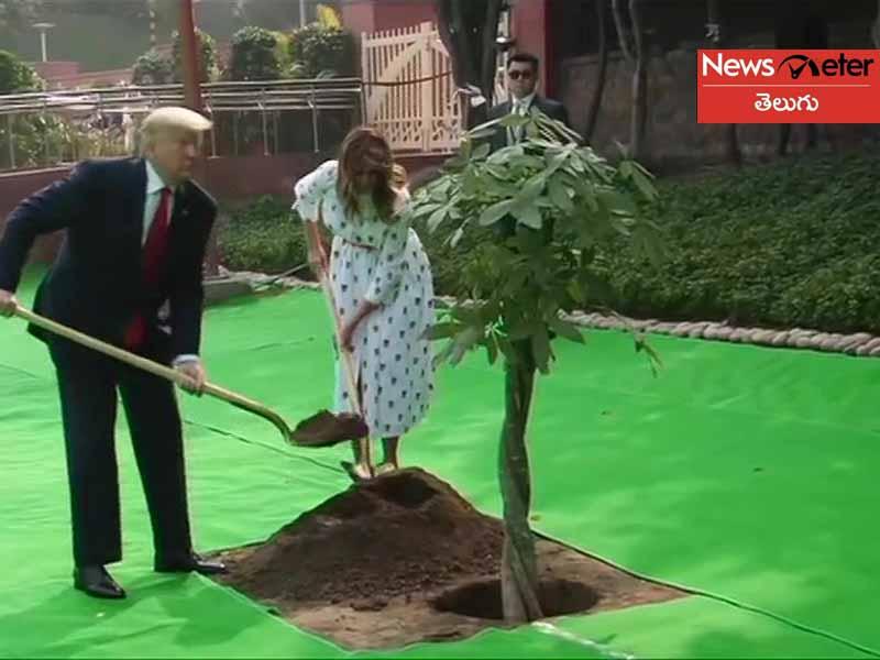 Trump plant a tree at Raj Ghat