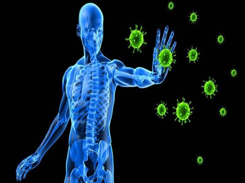 How To Improve Immunity Power