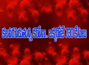 తెలంగాణలో కరోనా విజృంభణ.. ఒక్కరోజే 730 కేసులు