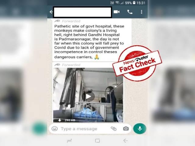 Fact Check : గాంధీ ఆసుపత్రిలోకి కోతులు ప్రవేశించాయా..?