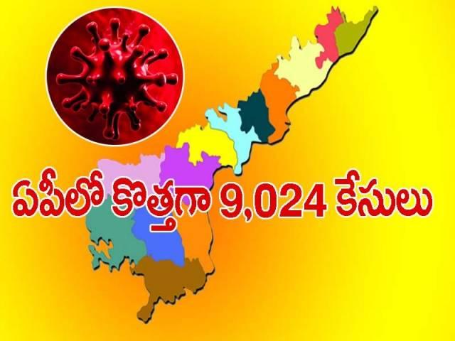 ఏపీలో కొత్తగా 9,024 పాజిటివ్ కేసులు.. 87 మంది మృతి