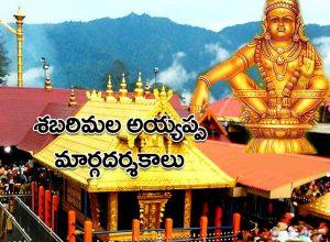 తెరుచుకున్న శబరిమల ఆలయం.. మార్గదర్శకాలు విడుదల చేసిన కేరళ ప్రభుత్వం